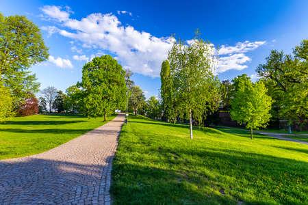 Spring view in Letna Park, Prague, Czech Republic. Spring in Prague (Praha), beautiful Letna park (Letenske sady) in sunlight, sunny landscape, popular tourist destination, Prague, Czech Republic