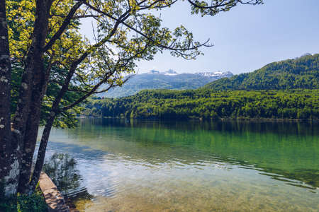 Lake Bohinj in Slovenia, beauty in nature. Colorful summer on the Bohinj lake in Triglav national park Slovenia, Alps, Europe. Mountain Lake bohinj in Julian Alps, Slovenia Zdjęcie Seryjne - 145656202