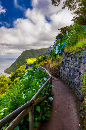Viewpoint Ponta do Sossego, Sao Miguel Island, Azores, Portugal. View of flowers on a mountain and the ocean in Miradouro da Ponta do Sossego Nordeste, Sao Miguel, Azores, Portugal.