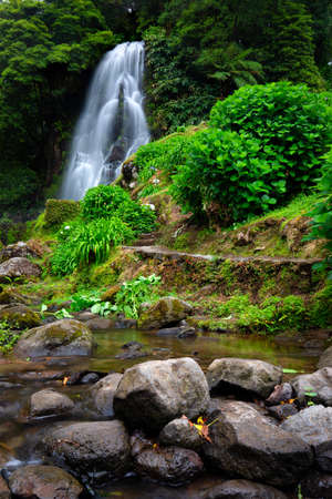 Waterfall at  Parque Natural Da Ribeira Dos Caldeiroes, Sao Miguel, Azores, Portugal. Beautiful waterfall surrounded with hydrangeas in Ribeira dos Caldeiroes park, Sao Miguel, Azores, Portugal
