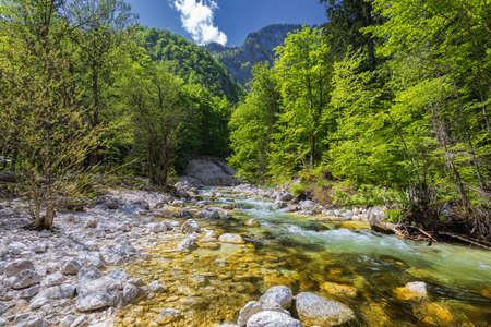 Cold mountain stream coming from Savica waterfall, river Sava near lake Bohinj, Slovenian Alps, Slovenia. The Sava Bohinjka is a headwater of the Sava River in northwestern Slovenia.