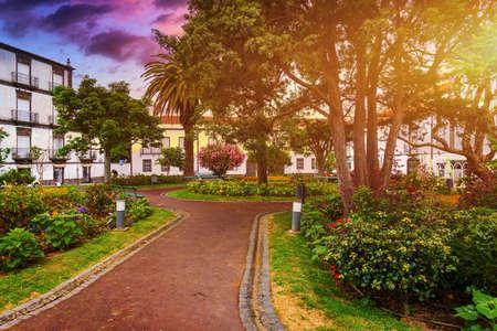 Beautiful Jardim Sena Freita, located in the historic center of Ponta Delgada city on Sao Miguel island. Azores, Sao Miguel, Portugal.