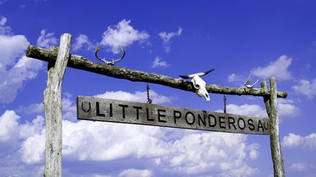 ponderosa: The Little Ponderosa, an interesting entrance to a farmers fields.  This has that cowboy out west feel but it is in the heart of the Blue Ridge Mountains.  Change your lifestyle, get out of the hustle and bussel and move out to the ranch. Stock Photo