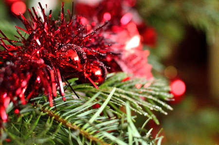 Close-up of Red Christmas Ornament on Christmas Tree.