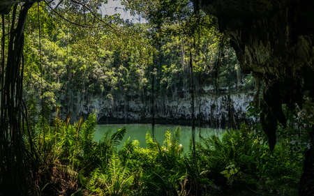 Beautiful landscape of vegetation bordering groundwater hole, The Three Eyes National Park, Dominican Republic.