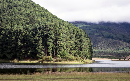 Close photo of small island formed on the waters of the Neusa reservoir in Cundinamarca Colombia.