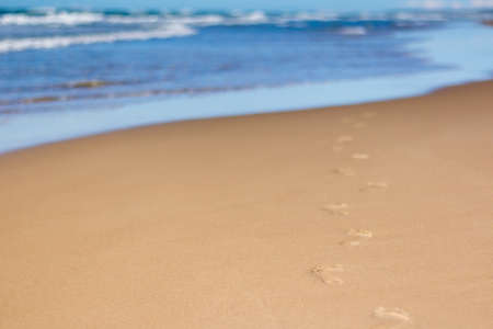 Footprints in sand at beach leading towards sea 版權商用圖片