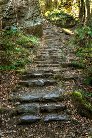 naturalized: Naturalized steps built into the trail along a gorge in Ohios Hocking Hills State Park. Stock Photo