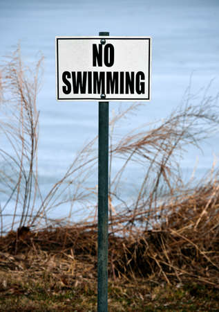 no swimming: No Swimming sign posted on a lake shore.