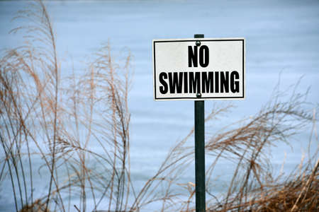 no swimming sign: No Swimming sign posted on a lake shore.
