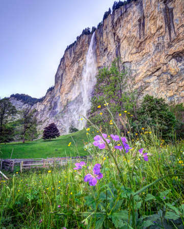 Lauterbrunnen Valley in the Jungfrau region of Switzerland featuring Swiss wildflowers and the Staubbach waterfall. Stock Photo