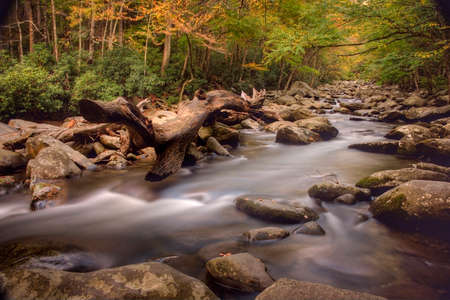 Scenic stream in the Great Smokey Mountains National Park.