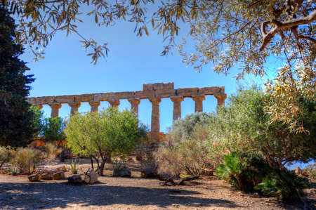 Ancient Greek temple columns surrounded by olive, agave, palm and other local vegetation of Agrigento, Sicily, Italy.