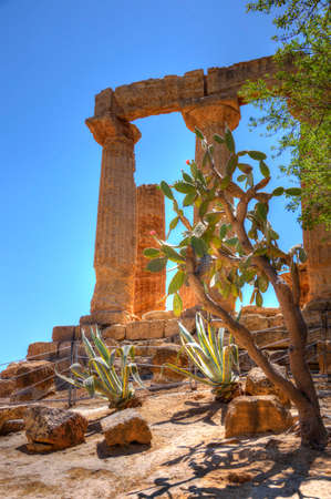 Large Cactus and Agave Plants Adorn a Greek Temple in the Valley of Temples - Agrigento, Sicily, Italy Editorial
