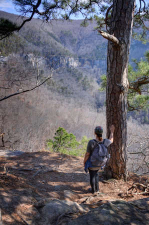 Ponca Wilderness Area, northwest Arkansas, USA - March 15, 2018: A Hiker looks out over Hemmed-in-Hollow in Northwest Arkansas.  This is a box canyon featuring the tallest waterfall between the Rockies and the Appalachians. Sajtókép