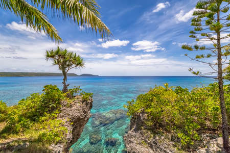 Scenic landscape with a single tree on top of a curved cliff, palm tree, pine and beautiful turquoise waters on the Island of Mare, New Caledonia Stock Photo