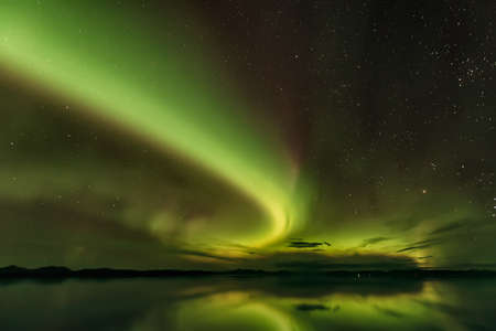 Gorgeous view of Northern lights in Alaska. Starry sky and green rays piercing the sky. 免版税图像