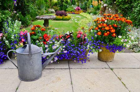 English country garden 스톡 콘텐츠