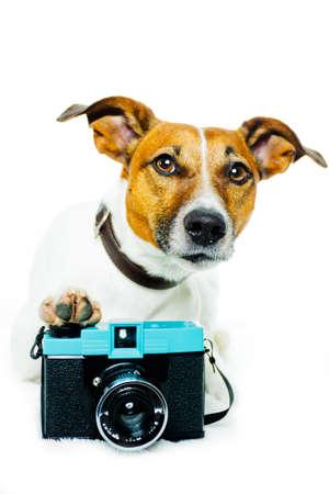 cane con fotocamera a scattare foto