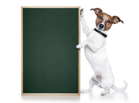 russell: dog with blackboard