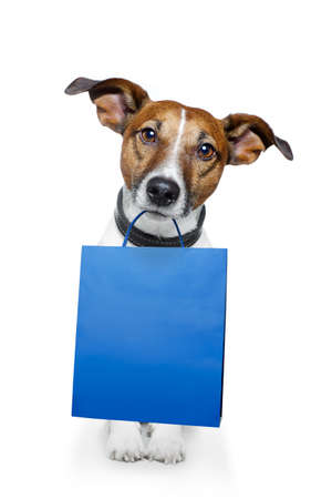 grappige honden: hond winkelen Stockfoto