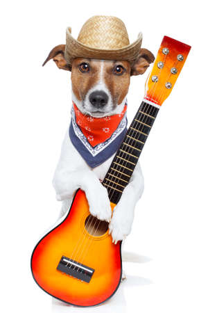 talented: country dog with a guitar and a cowboy hat Stock Photo