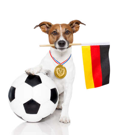 paw russell: dog as soccer with a medal and flag Stock Photo