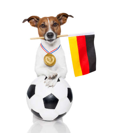 dog as soccer with a medal and flag photo