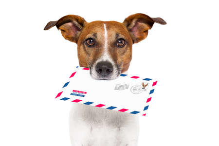 e mail: dog with glasses delivering air mail envelope with stamp Stock Photo