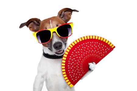 clima: perro español con un ventilador de mano roja