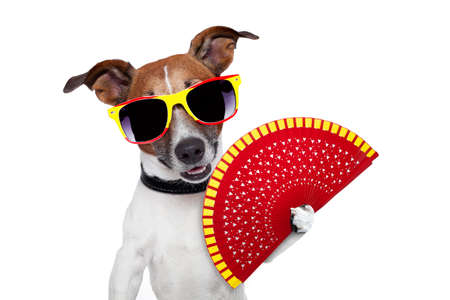 parody: spanish dog with a red hand fan