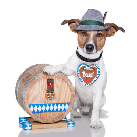 bavarian: oktoberfest dog with beer barrel and gingerbread heart