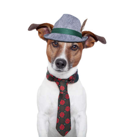 bavarian dog with traditional tie and hat