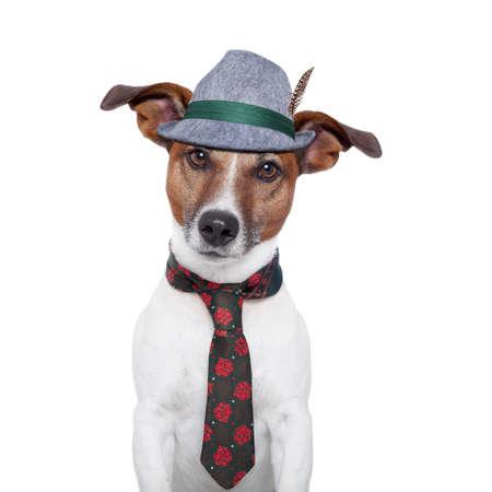 Hund mit traditionellen bayerischen Krawatte und Hut Standard-Bild