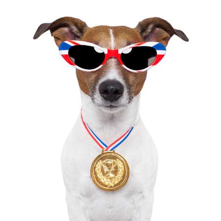 britain flag: perro ol�mpico con la gran bandera de Gran Breta�a Foto de archivo