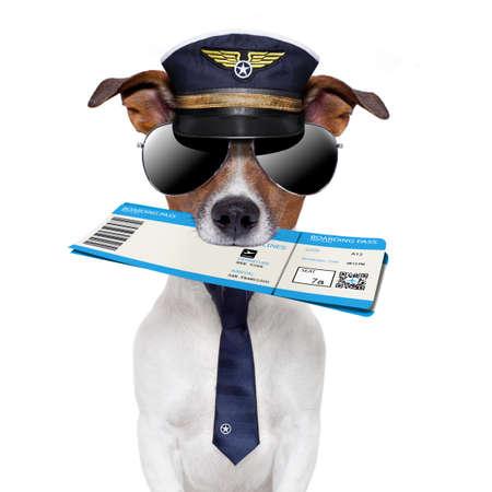 boarding card: Dog Boarding pass con cappello e cravatta Archivio Fotografico