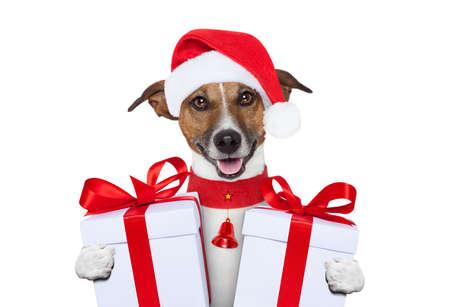 santa noël chien avec des cadeaux Banque d'images