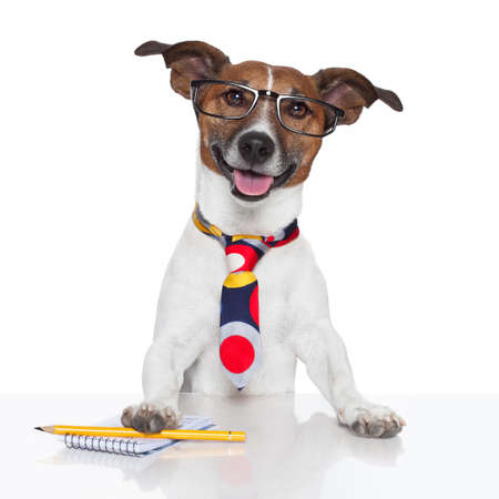 business dog typewriter tie glasses
