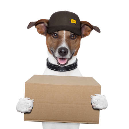 delivery driver: dog delivery post box