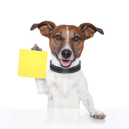 post card: notitie banner hond geel