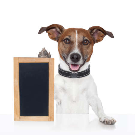 dog school: board placeholder banner dog wood Stock Photo