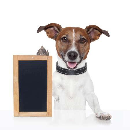 zastępczy deska banner drewno pies Zdjęcie Seryjne