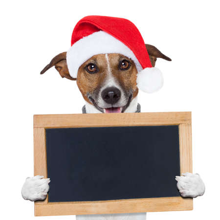 christmas paste: christmas banner placeholder dog wood board Stock Photo