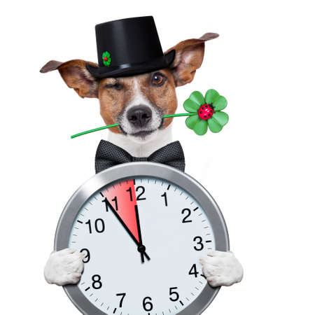 good luck chimney sweeper dog with hat and clock photo