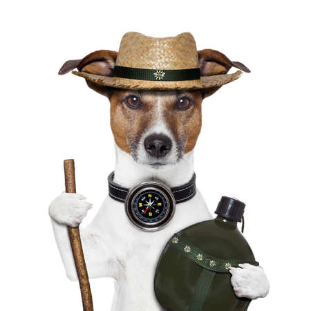 explore: hike compass hat dog canteen bottle Stock Photo