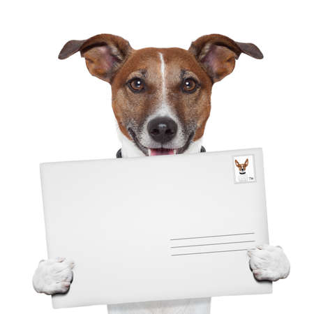 mail address: post envelope mail stamp dog with letter Stock Photo
