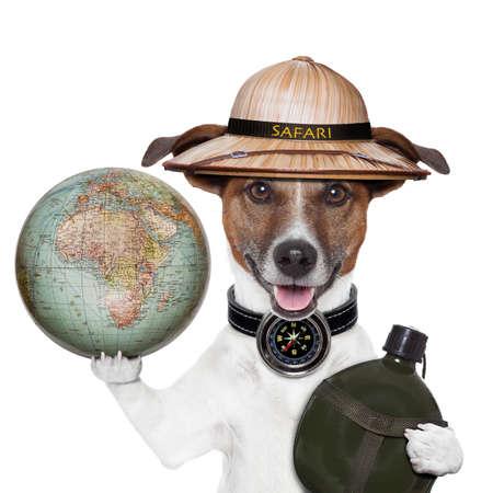 tourist vacation: viaggio globo bussola cane safari