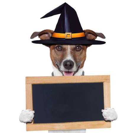 halloween decoration: halloween placeholder banner dog
