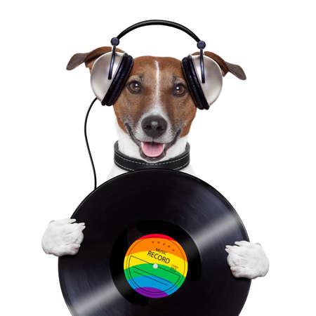 jack of clubs: music headphone vinyl record dog