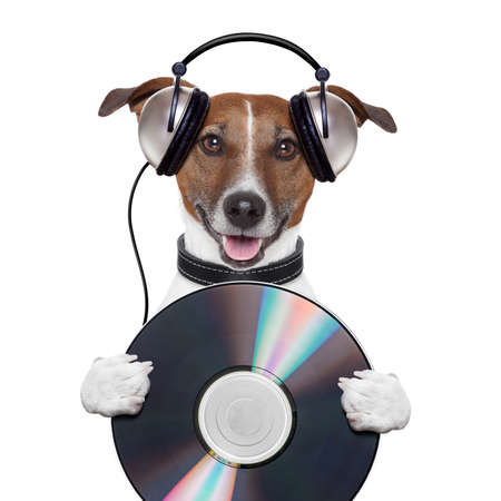 music headphone cd dog Stock Photo